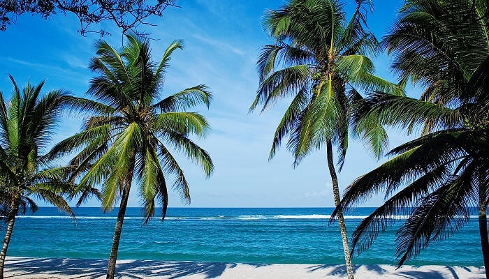 10 Most Beautiful Beaches In Kenya