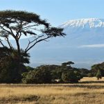 Amboseli National Park