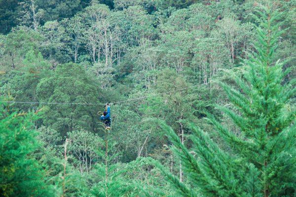 Kereita ziplining 2