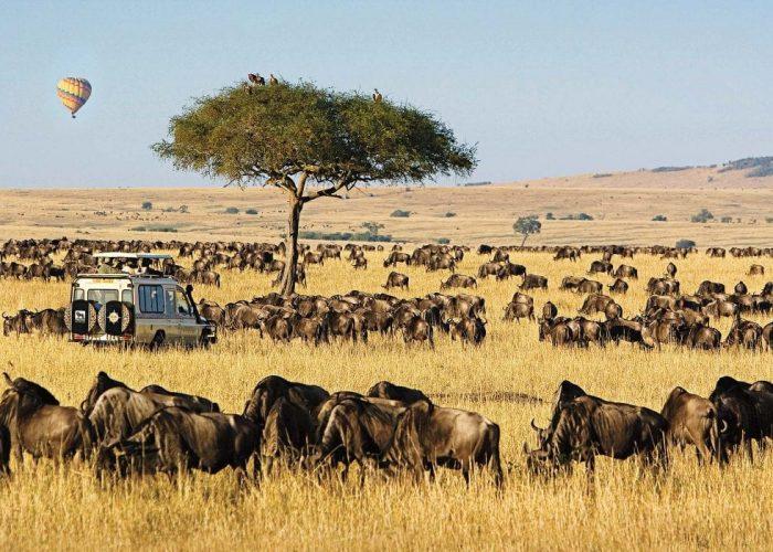 Masai-Mara-National-Reserve-Bella-Safaris