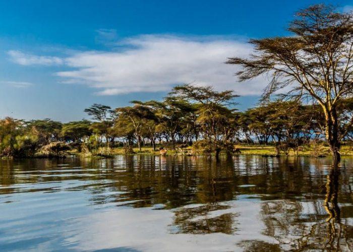 Naivasha- Bella Safaris